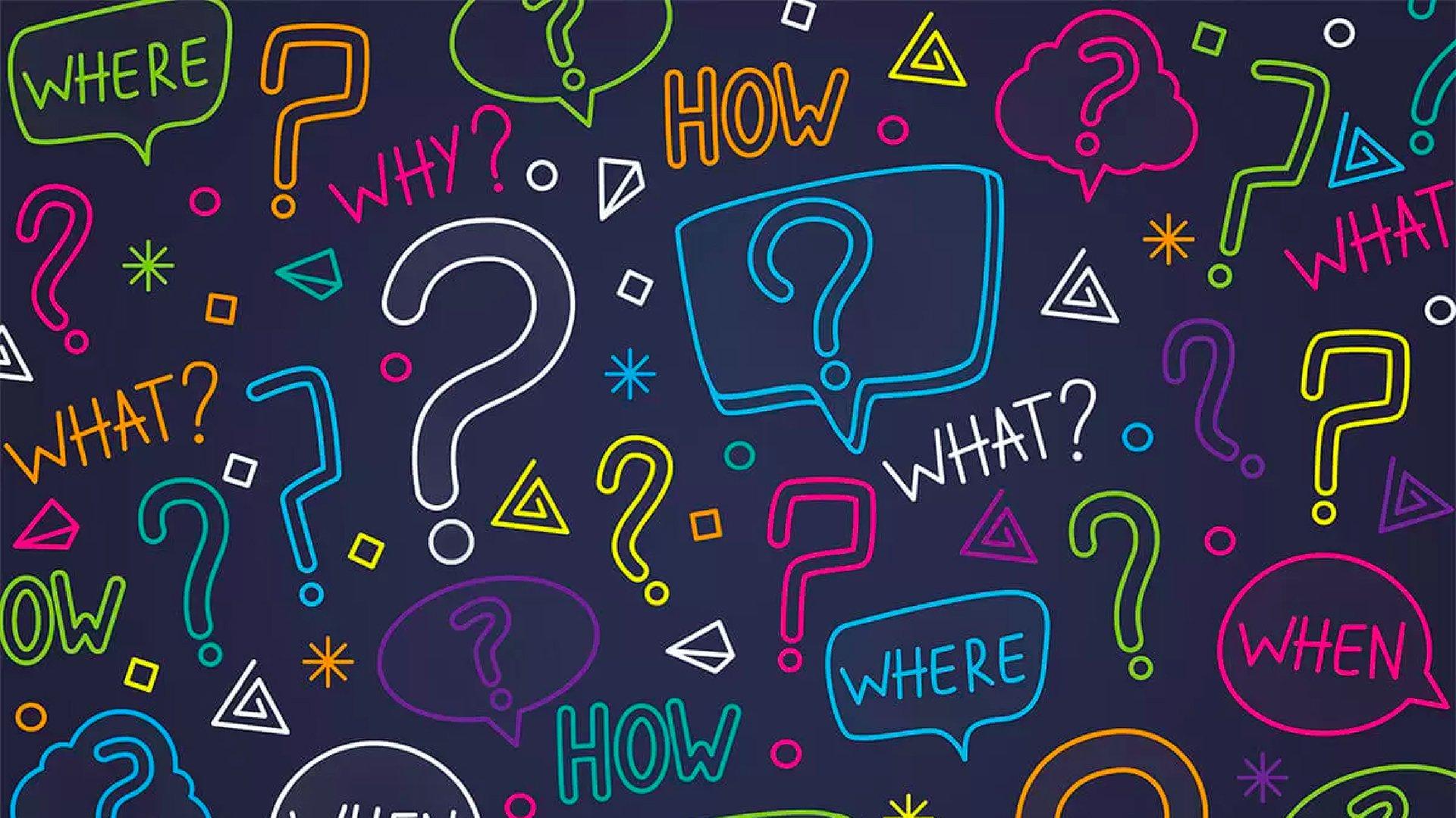 Domande Al Veterinario Cane domande frequenti   union lido